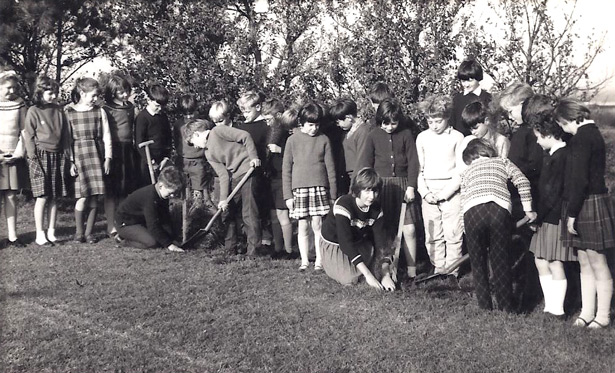Tree planting St Saviours school 1965